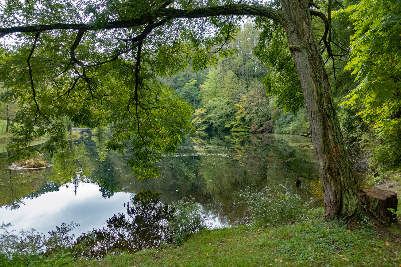 Trimble Lake in early autumn